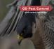 GD Pest Control