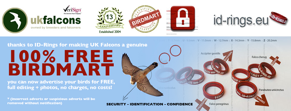 UK Falcons Birdmart