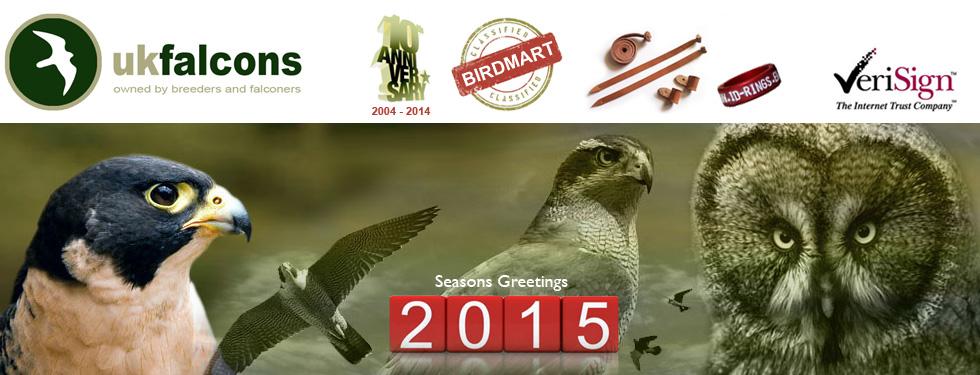 UK Falcons Birdmart